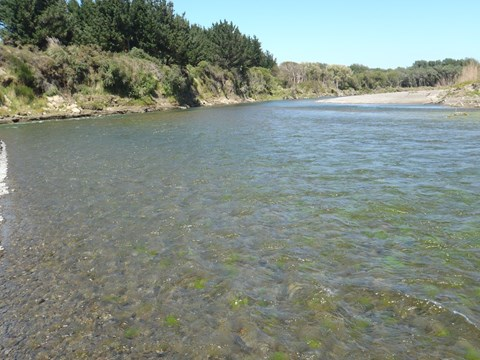 Rangitikei at McKelvies