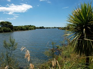 Rangitaiki River @ Thornton Domain 003