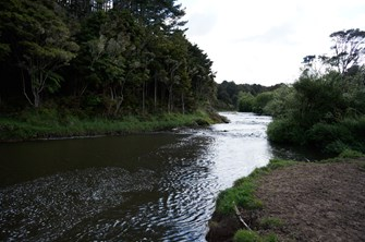 Hakaru River @ Topuni Creek Farm