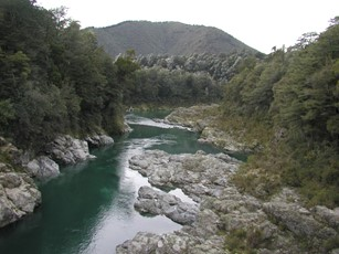 Pelorus River @ Bridge