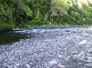 Waiwhakaiho River at Merrilands Domain