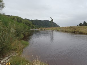Mawheraiti River @ Maimai downstream