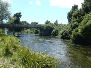 Vickers Creek @ Whataroa North Base (3)