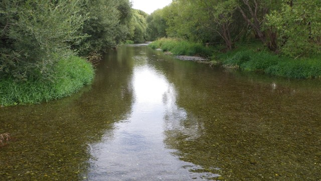 Selwyn River at Coes Ford site