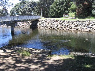 Te Henui at Bridge