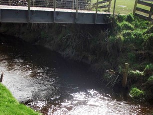 Waituna Creek at Marshall Road