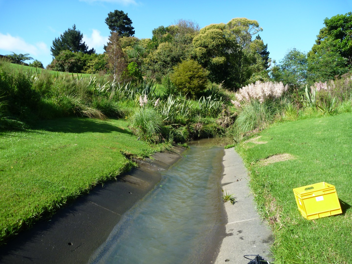 Pakuranga Creek