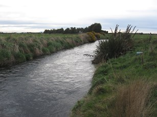 Waimatuku Stream at Lorneville Riverton