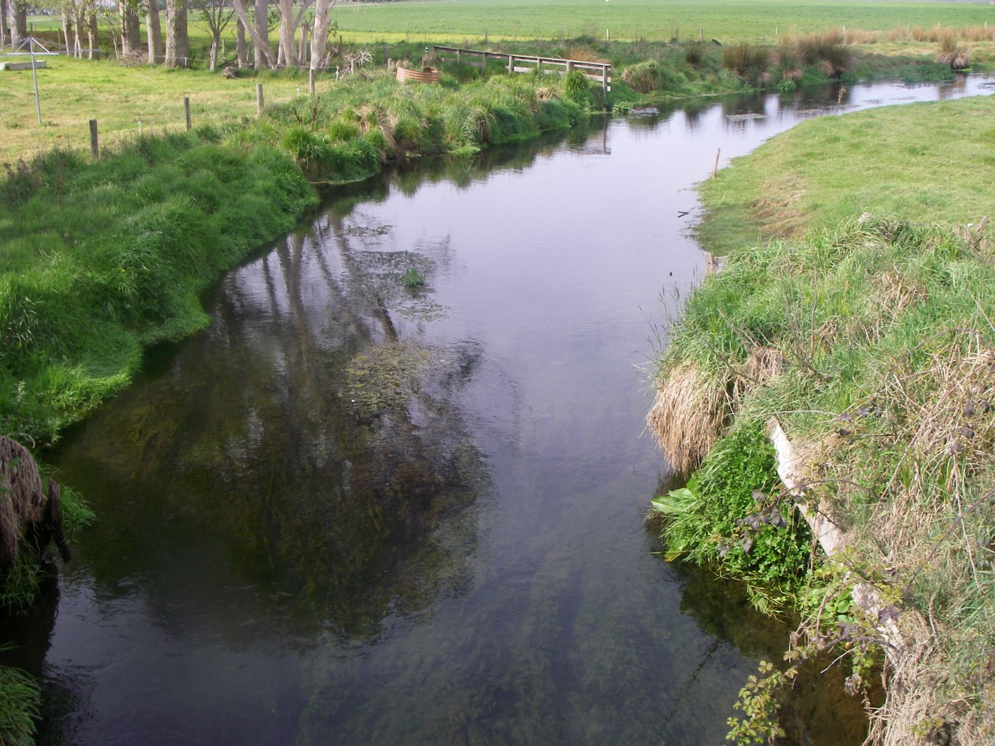 Waimate Creek Catchment