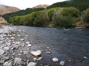 Mohaka downstream of Ripia River confluence