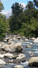 Waiwhakaiho river at National Park Boundary (2)