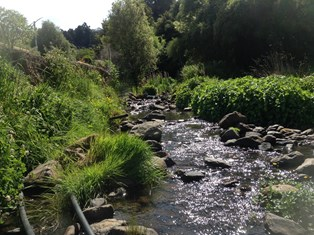 French Farm Stream at Winery