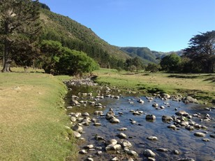 Peraki Creek upstream