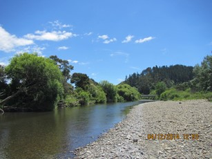 Otara at Browns Bridge