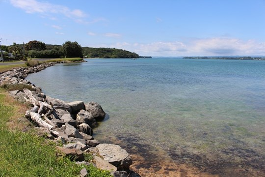 Tauranga Harbour at Bowentown boat ramp - Water
