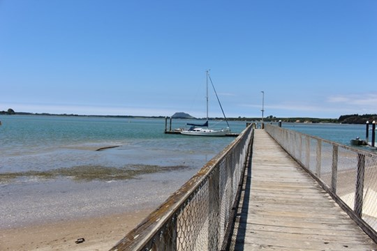 Tauranga Harbour at Omokoroa Domain - Jetty