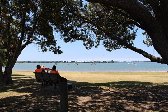 Tauranga Harbour at Omokoroa Domain - Sitting under Trees