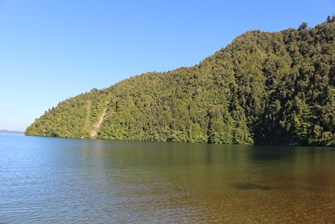 Lake Rotoiti at Hinehopu - View