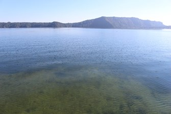 Lake Rotoiti at Gisborne Point - Clear Water