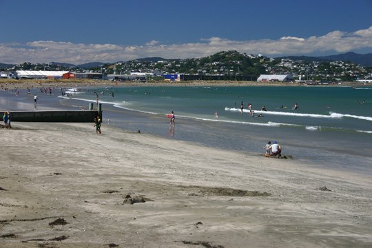 Lyall Bay Queens Drive
