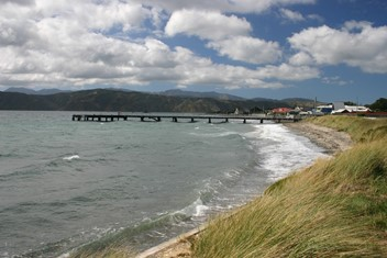 Seatoun Beach