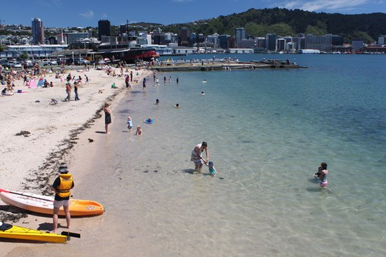 Freyberg Beach