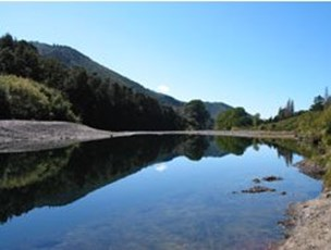 Pelorus River at Totara Flat 2