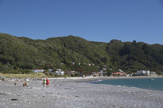 Robinson Bay at Nikau Street