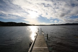 Lake Rotoma -  jetty - June 2011 069