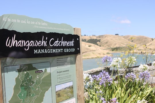 Whangawhehi Catchment Project