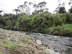 Kapoaiaia Stream at Wataroa Road